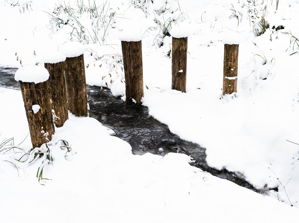Bach im Schnee