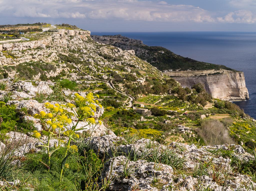 Malta - Dingli Cliffs