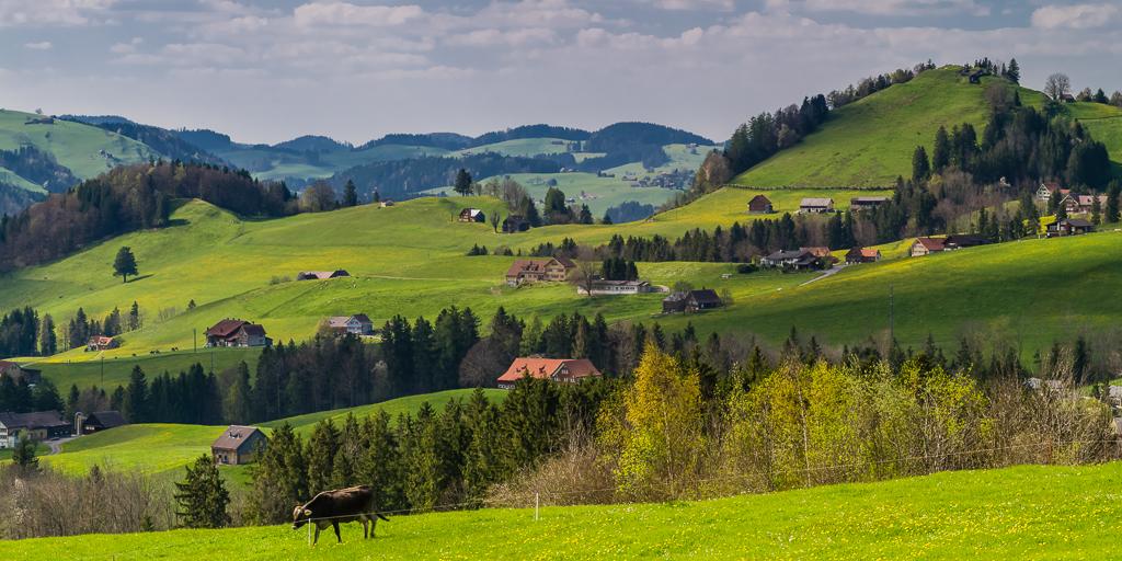 Appenzeller Landschaft