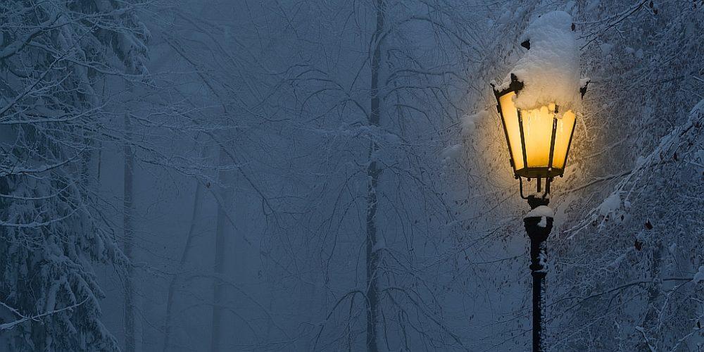 Winternacht auf dem Uetliberg
